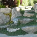 Rock wall and boulder steps overgrown and landscaped