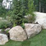 Boulders placed along with trees and shrubs